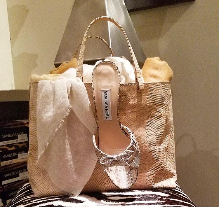 Vanessa Noel shoe and tote
