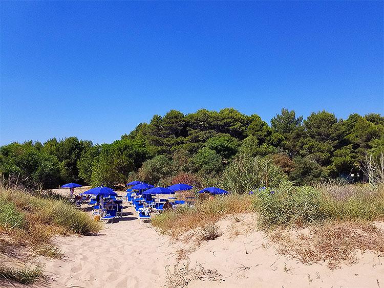 La Foresteria beach club