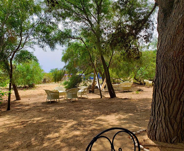 The Foresteria Beach Club