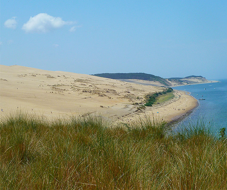 A view of the Dune of Pilat