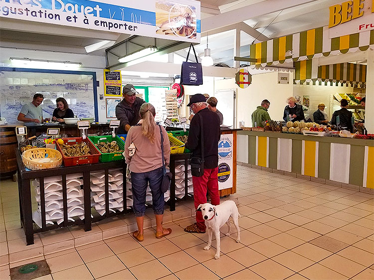 A dog in front of an oyster stall and a fruit stall in the Cap Ferret market