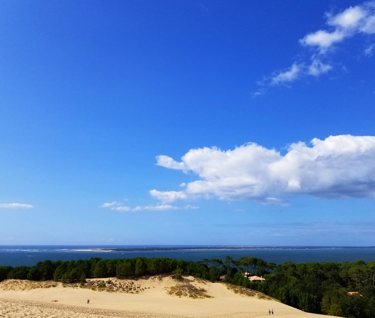 A view from the top of the Dune of Pilat