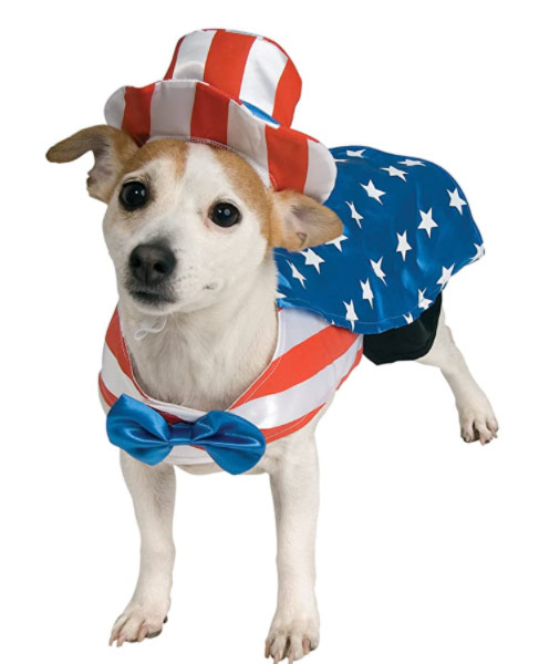 Karen Klopp & Hilary Dick article for New York Social Diary What to wear Halloween 2020. Doggie Uncle Sam
