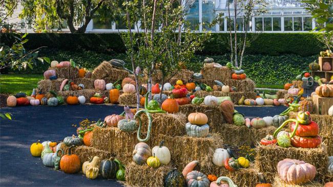 Karen Klopp & Hilary Dick article for New York Social Diary What to wear Halloween 2020.  NY Botanical Garden