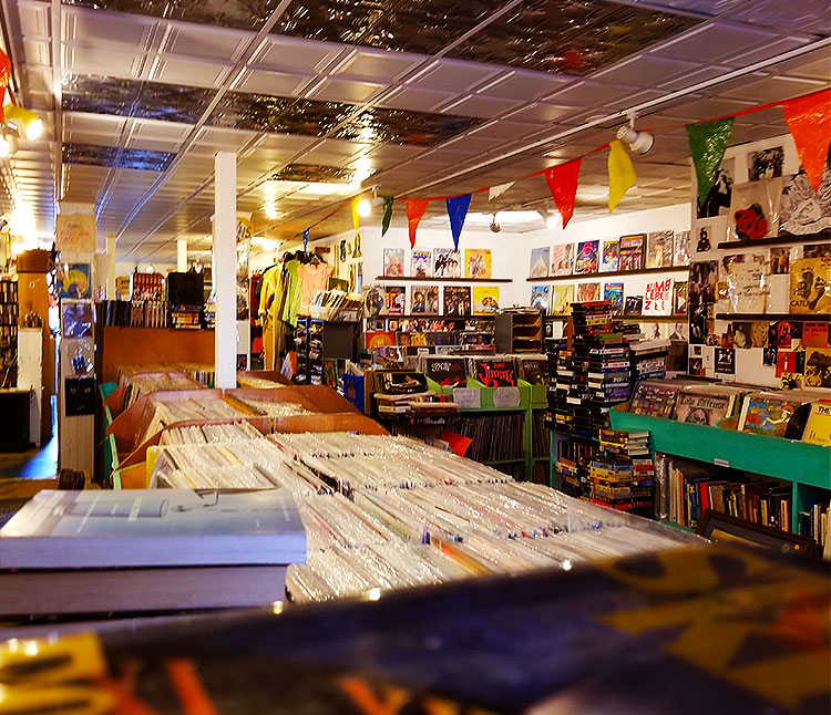 Vintage Records and Books in Hudson