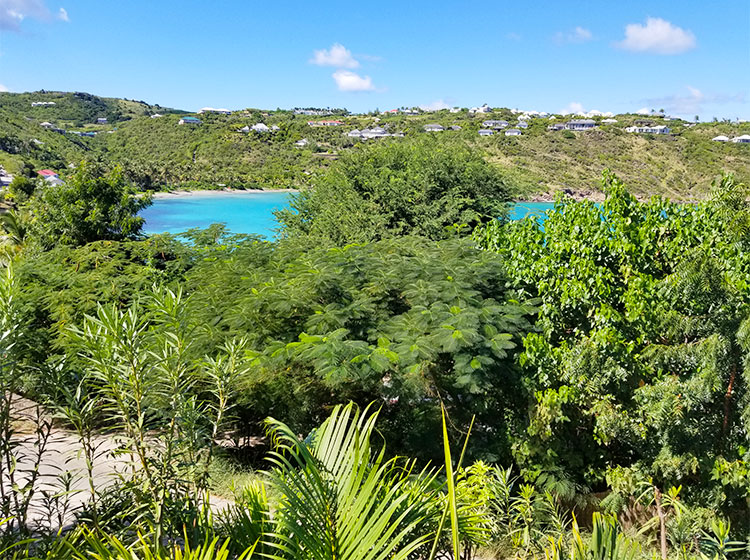 The View of Marigot From The Villa.