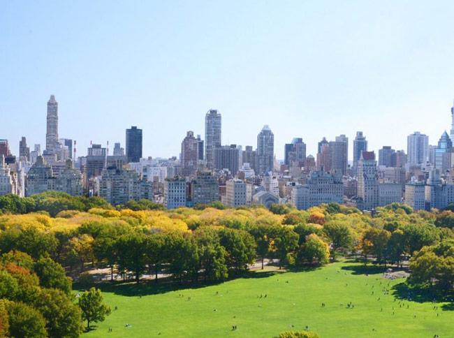 karen klopp, hilary dick, Hat Lunch New York Social Diary. Central park conservancy luncheon