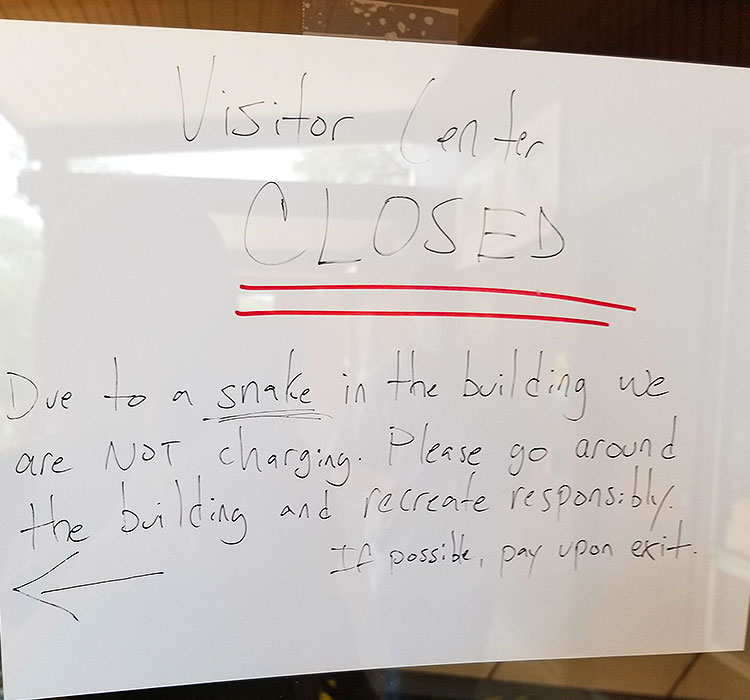 Closed due to Snakes