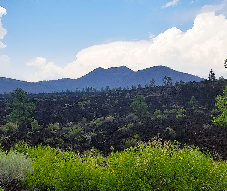 An Old Lava Field