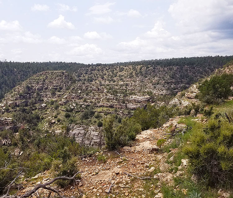 Some of The Dwellings at Walnut Canyon